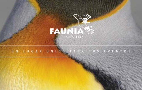 Catálogo Faunia